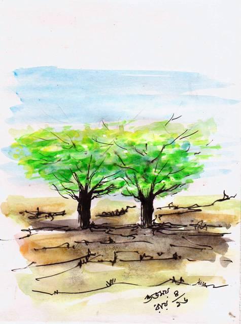 Death of a Rain Tree