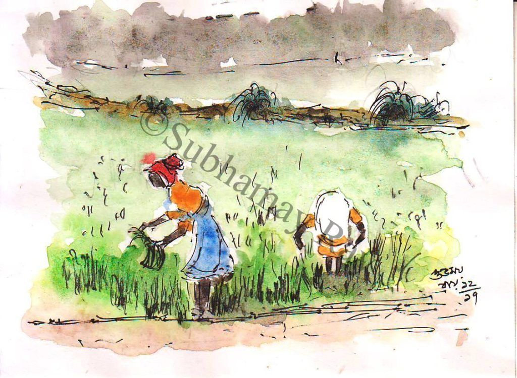 line and wash sketch of women working in the field